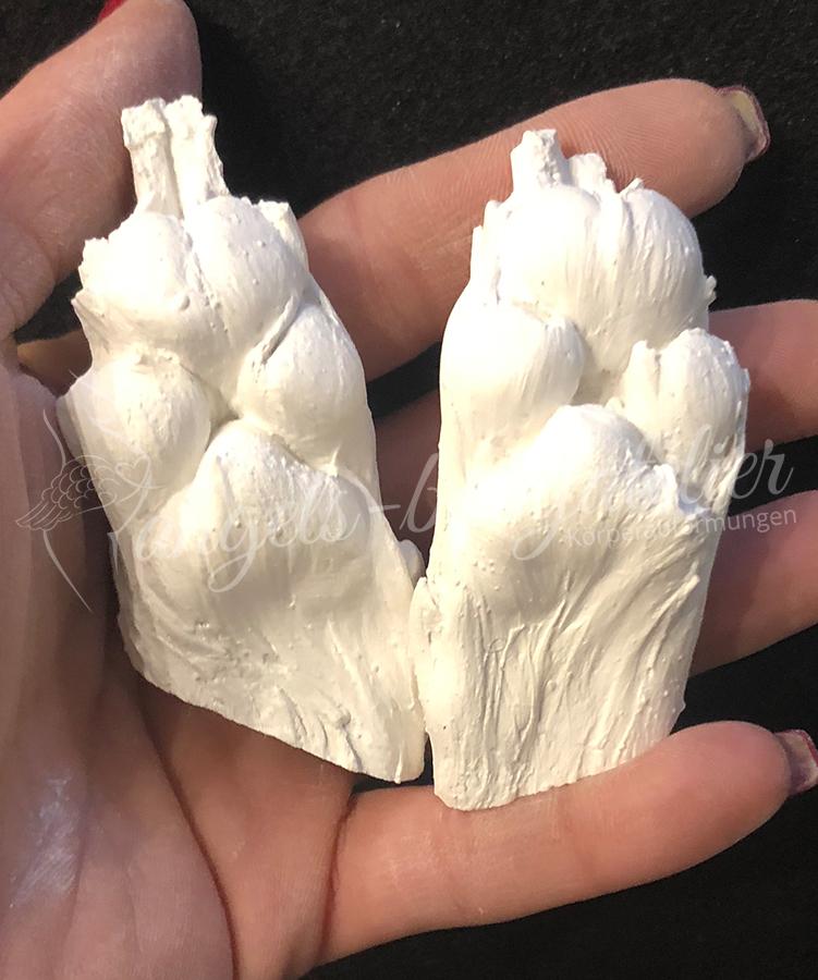 3 D Hundepfoten frisch aus der Form